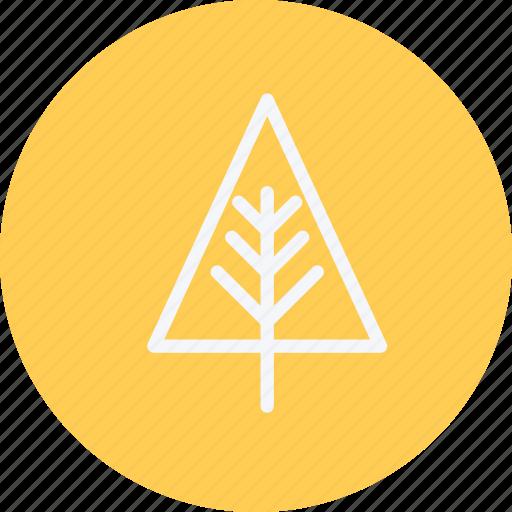 eco, ecology, nature, pine, plant, tree, trees icon