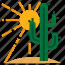 cactus, mexico, sand, summer, sun