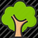 eco, green, nature, tree