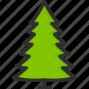 eco, fir-tree, green, nature, tree