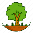 leaf, plant, nature, tree, forest