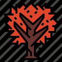 garden, maple, plant, season icon