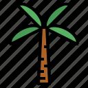 botanical, ecology, nature, palm icon