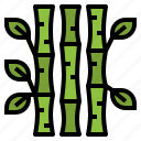 bamboo, botanical, garden, plant icon