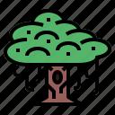 banyan, botanical, tree, yard icon