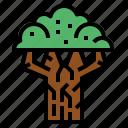beech, ecology, nature, tree icon