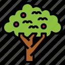 cherry, organic, tree, vegan icon