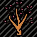 blossom, botanical, flower, magnolia icon