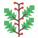 branches, holly, nature, plant