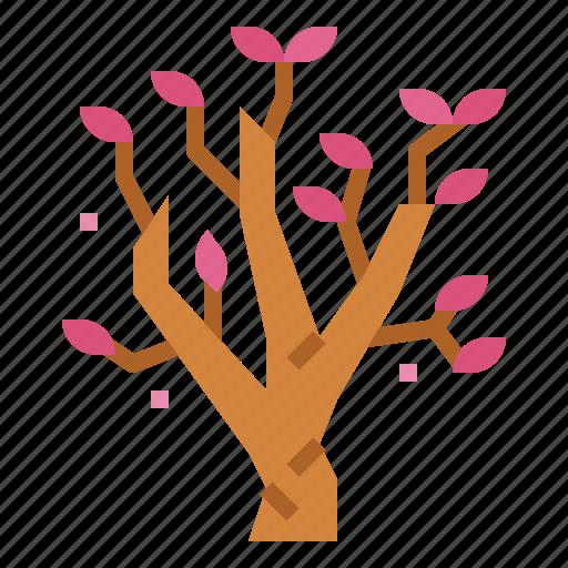 Blossom, botanical, flower, magnolia icon - Download on Iconfinder