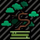 bonsai, botanical, garden, gardening, tree, yard