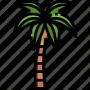 botanical, coconut, garden, gardening, tree, yard