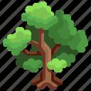 botanical, garden, gardening, tree, yard icon