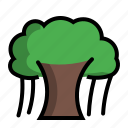 ancient, banian, big, century, old, plant, tree icon