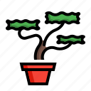 bonsai, plant, pot, tree icon
