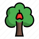 apple, java, plant, syzygium, tree icon