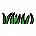 grasses, herb, plant, poaceae icon
