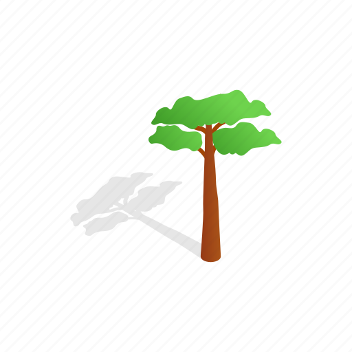 forest, isometric, leaf, nature, pine, shadow, tree icon