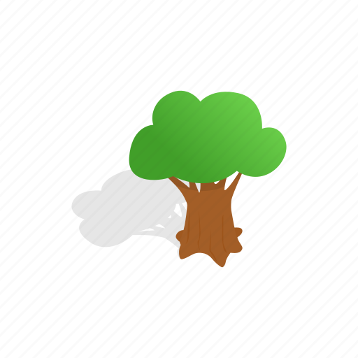 forest, isometric, leaf, nature, oak, plant, tree icon