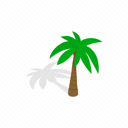 forest, isometric, leaf, nature, palm, plant, tree icon