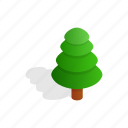 fir, isometric, leaf, nature, plant, shadow, tree icon