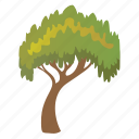 charter oak tree, deciduous tree, evergreen, forestry, shrub tree icon