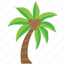coconut tree, date tree, nature, palm tree, tropical tree icon