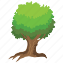 forest, generic tree, green foliage, odorless wood, wright acacia tree icon