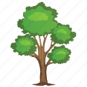 agriculture, birch tree, chestnut tree, forestry, nature icon