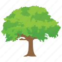 black locust tree, forest, nature, tree trunk, woods icon