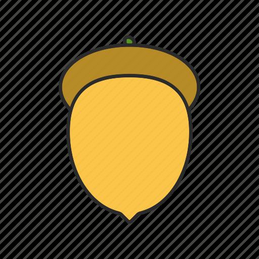 acorn, forest, nature, oak, oak-nut, seed, tree icon