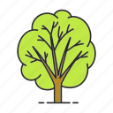 forest, garden, leaf, nature, park, plant, tree icon