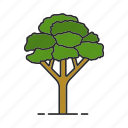 acer, foliage, forest, maple, nature, park, tree icon