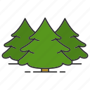 conifer, fir, forest, nature, park, spruce, tree icon