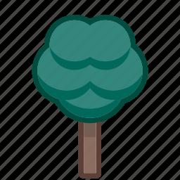arbor, ecology, final, jungle, leaf, life, tree icon