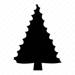 christmas, cone, douglas fir, fir, forest, pine tree, spruce icon
