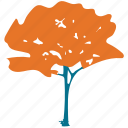 generic tree, nature, simple tree, tree icon