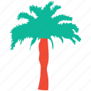 generic tree, nature, palm tree, tree icon