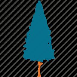 generic tree, poplar, shrub tree, tree icon