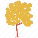 generic tree, maple, nature, tree icon