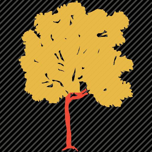 generic tree, maple, nature, tree icon