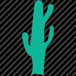 cactus, generic tree, plant, tree icon