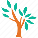 generic tree, leafy, small tree, tree icon