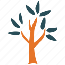 leafy, nature, small tree, tree icon