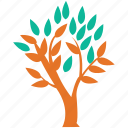generic, leafy tree, leaves, tree icon
