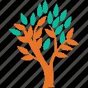 leafy tree, leaves, tree, generic icon