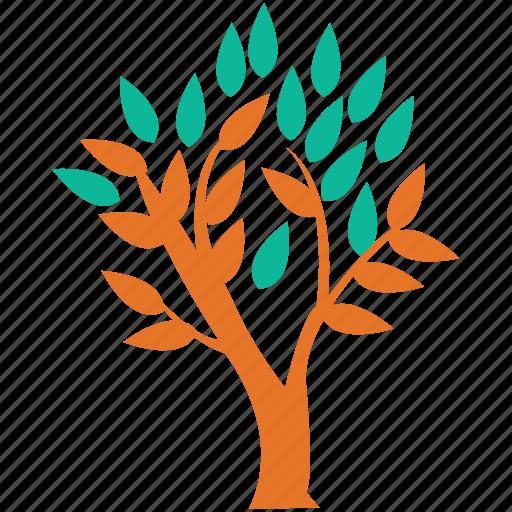 generic, leafy tree, leaves, tree icon