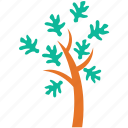 cypress leaves, generic, open form, scalelike leaves, tree icon