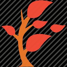 generic, leafy, plant, small plant icon