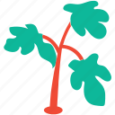 generic, herbs, nature, parsley icon